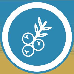 Schürmann Genusswelten | Spirituosen Icon